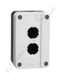 caja industrial 2 pulsadores chint np2-b02